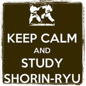 study shorin ryu