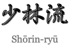 Shorin Ryu Karate Enschede